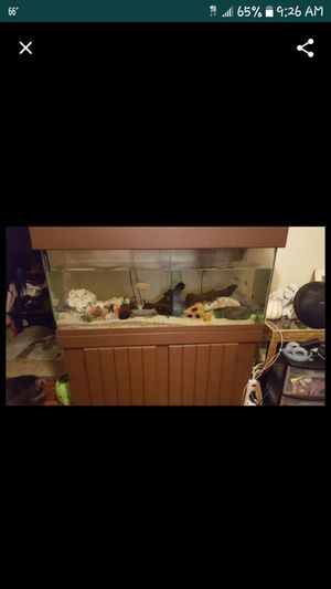 Fish tank 55 for Sale in Jersey City, NJ