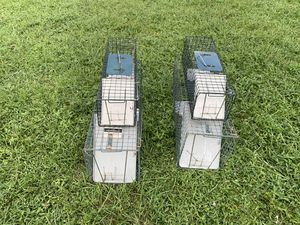 Small Animal Traps for Sale in Port St. Lucie, FL