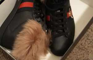 New Gucci size 11 for Sale in Nashville, TN
