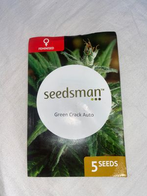 Seedsman cannabis seeds : Green crack Auto for Sale in Los Angeles, CA