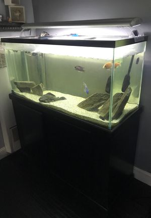 Fish tank for Sale in Whittier, CA