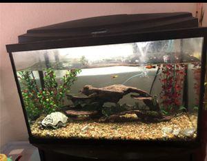 29 gallon Fish Aquarium for Sale in Coppell, TX