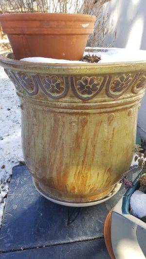 Plant pot. for Sale in Colorado Springs, CO