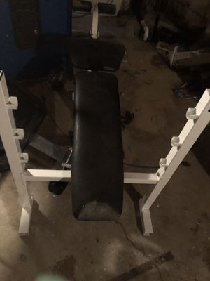 Bike Bench & Ab Lounger for Sale in Columbus, OH
