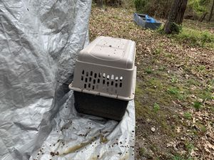 Dog carrier, large, used maybe 2 times for Sale in Grottoes, VA
