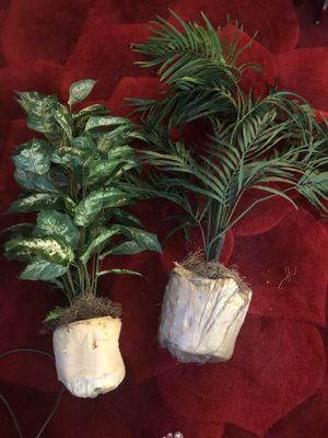 Two fake plants around 4 feet tall for Sale in Annandale, VA