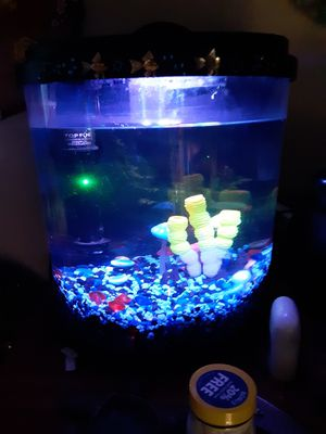 Fish tank for Sale in Goldsboro, NC