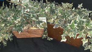 Fake Bush plant (silk) for Sale in Orlando, FL