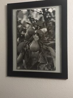 Black And White Framed Pear Photograph for Sale in Carbonado,  WA