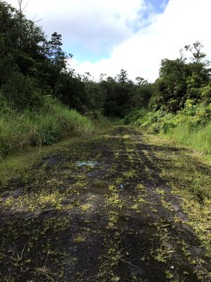 8000 Square feet lot Mountain View Hawai'i for Sale in Hilo, HI