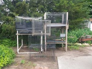 Small Animal Cages for Sale in Hastings, NE