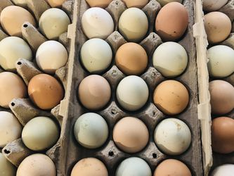 Egg Cartons for Sale in Vancouver,  WA