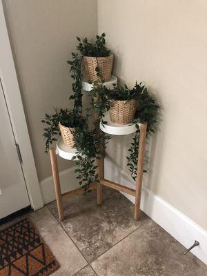 Plants w holder for Sale in Clovis, CA