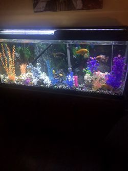 fish tank 55 gal for sale with everything for Sale in Oklahoma City,  OK
