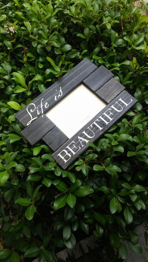 Large Pier 1 Imports Photo Frame for Sale in Orlando, FL