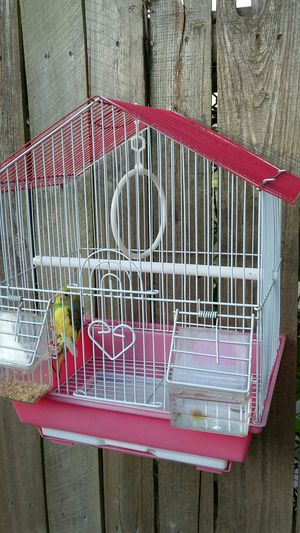 Very nice birdcage for sale great for kids !! for Sale in Tampa, FL