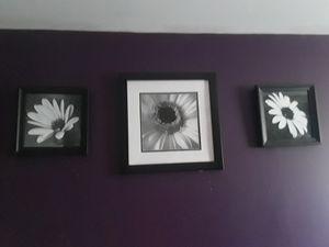 Floral Picture frames for Sale in Frostproof, FL