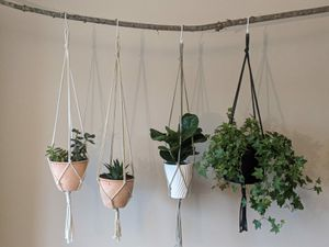 2 Macrame Plant Hangers for Sale in Youngstown, OH