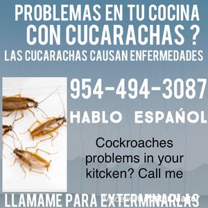Exterminating cockroaches. for Sale in Dacula, GA