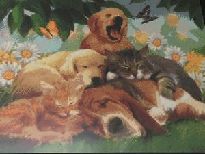 Diamond Painting Cats and Dogs for Sale in Takoma Park, MD