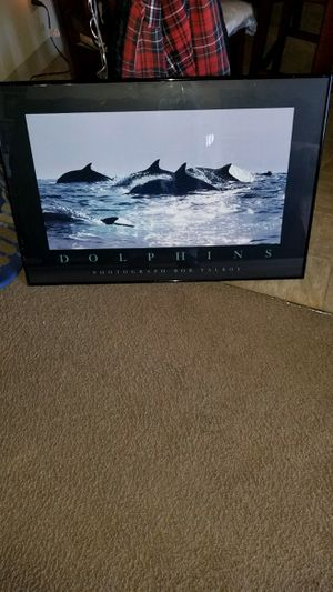 Dolphin motivational pictures. for Sale in Poway, CA