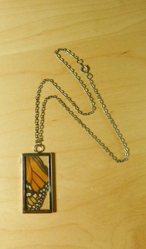 Real Butterfly Wing Glass Necklace for Sale in Vancouver, WA