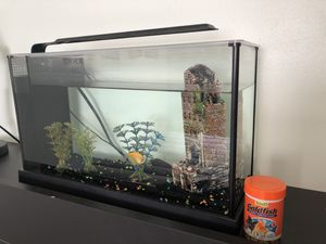 Fish tank, light, two fish and food $30 for Sale in Universal City, TX