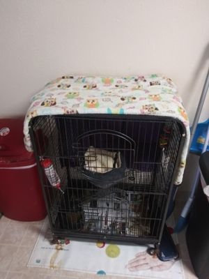 Ferret cage and ferret for Sale in Atascadero, CA