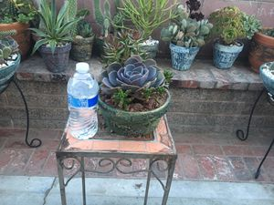 Rustic centerpiece with big Rose and succulent for Sale in Fontana, CA