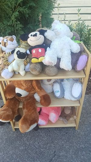 teddy for Sale in Hillsboro, OR