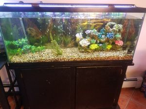 Aquarium 55 gallon full set up for Sale in Newark, NJ