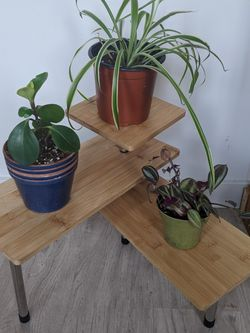 Unique Bamboo Plant Stand for Sale in Portland,  OR