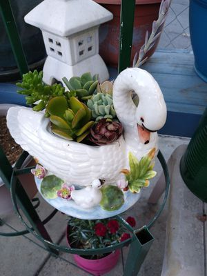 Swan With Succulents for Sale in Montclair, CA