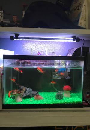 10 gallon fish tank with aquaponics garden for Sale in Orlando, FL