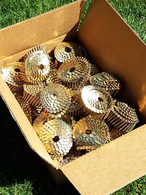 40+ rolls of 1 1/2 inch nails for Sale in Cheyenne, WY