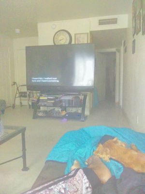 Tv and TV stand ..both for 160. Tv 100 stand 60 for Sale in Las Vegas, NV