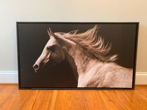 Canvas Horse Wall Art In Frame for Sale in North Bethesda, MD