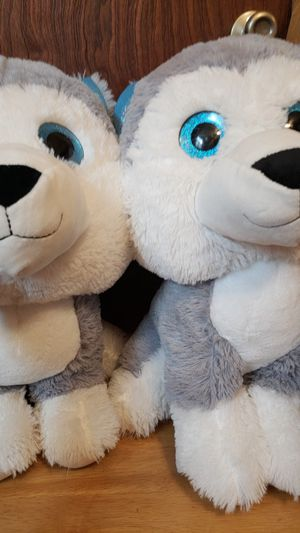 Big headed Huskies! for Sale in Center Point, WV