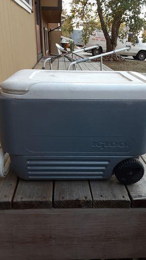 Gray Cooler for Sale in Denver, CO