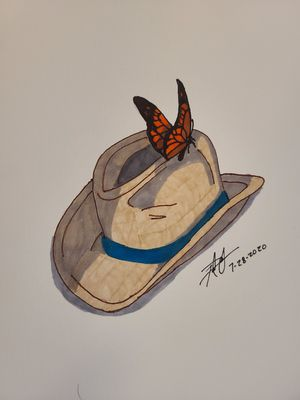 Butterfly and Cowboy Hat for Sale in Gilmer, TX