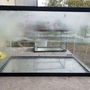 20 Gallon Fish Tank for Sale in Bellflower, CA