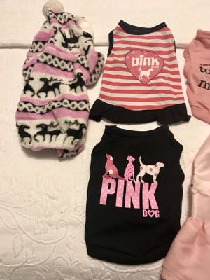 clothes for dog girls for Sale in Weston, MA