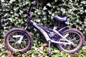 Kids Trek Dialed Bike for Sale in Portland, OR