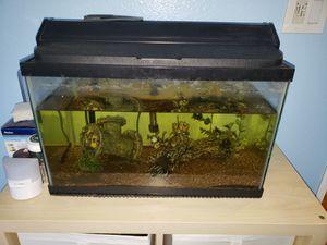 10 gallon fish tank for Sale in Santa Ana, CA