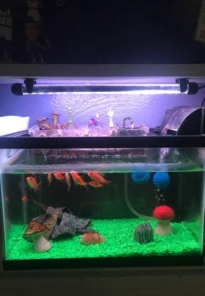 10 gallon aquaponics fish tank for Sale in Orlando, FL
