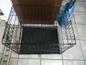 Kennel dog for Sale in San Antonio, TX