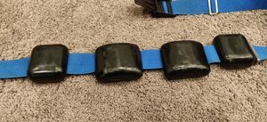 Scuba Weight Belt and Lead Weights 12 lbs for Sale in Maple Valley, WA