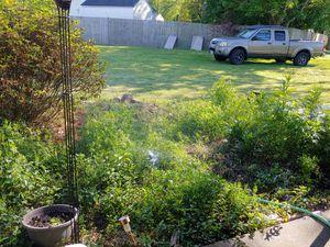 artist made lawn sprinkler rock for Sale in Virginia Beach, VA