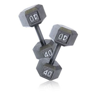 40 lb Dumbbells (2) for Sale in Lynnwood, WA