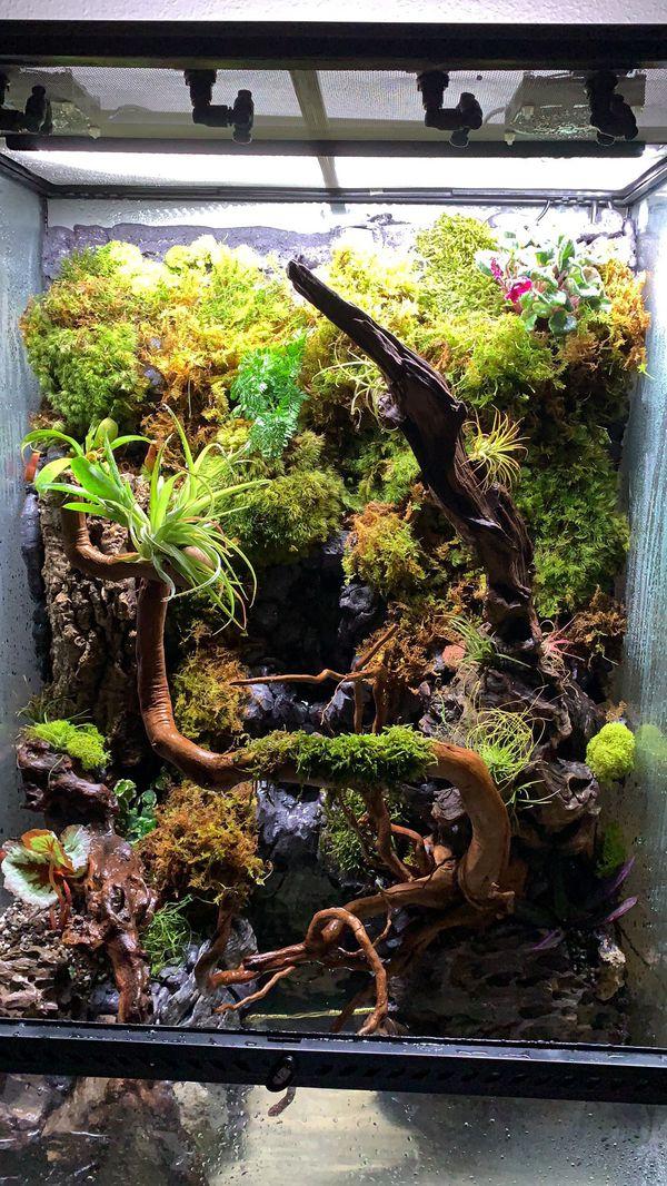exo terra Terrarium tank aquarium